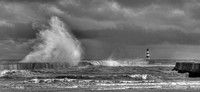 Seaham Black and White No1