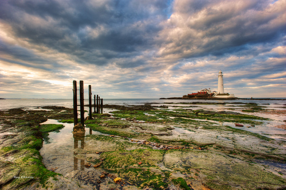 St Mary's Lighthouse, No# 6, Northumberland Coast