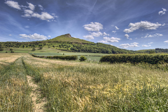 Towards Roseberry Topping. No #1