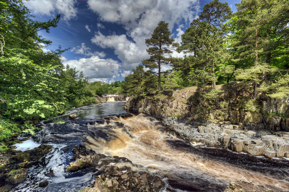 Low Force, Teesdale, 18/06/12